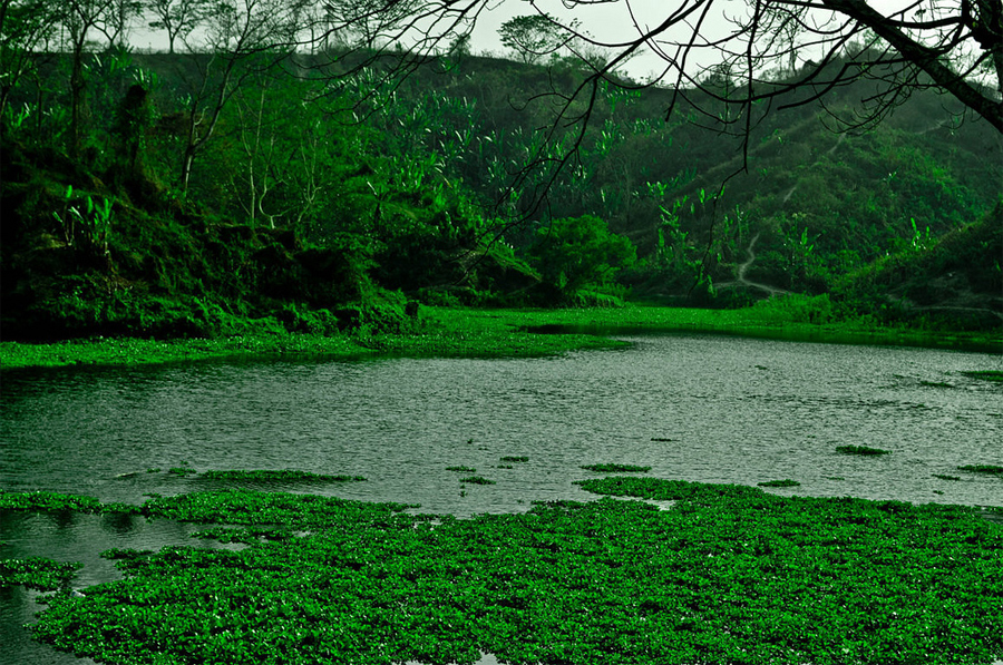 Travel to Bangladesh Meghla