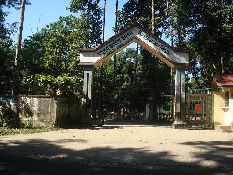 Modhupur Picnic Spot