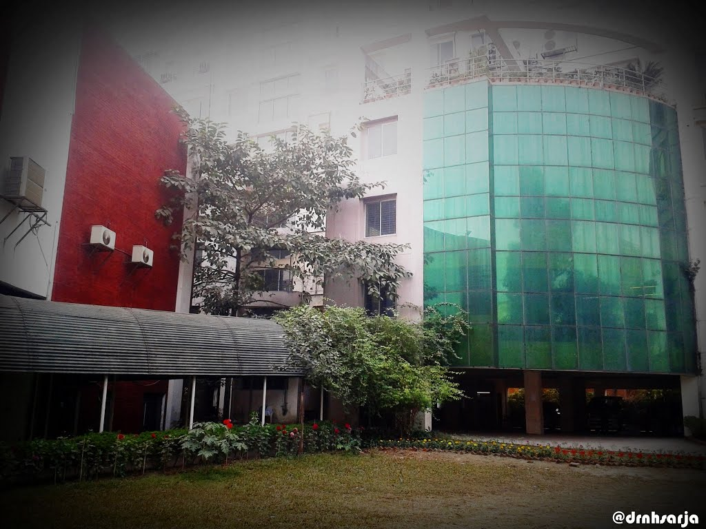 Bangladesh College of Physicians and Surgeons (BCPS)