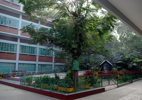 Travel to Bangladesh St Francis Xavier's Green Herald International School