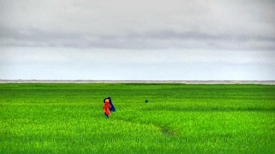 Travel to Bangladesh Nijhum Island