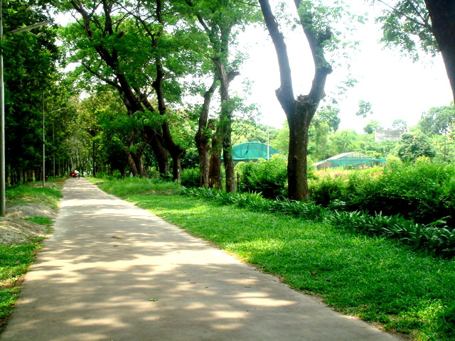 Travel to Bangladesh Botanical Garden